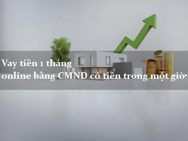 Vaytien1thang Vay tiền 1 tháng online bằng CMND có tiền trong một giờ